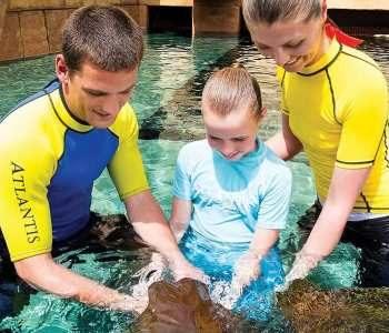 Музей подводного мира The Lost Chambers Aquarium Дубай